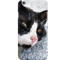 Dozing on the Mountain iPhone Case/Skin