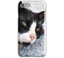 Dozing on the Mountain iPhone Case/Skin
