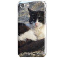 Meteora Cat iPhone Case/Skin