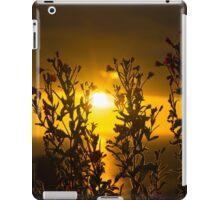 wild atlantic way sunset through wild flowers iPad Case/Skin