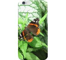 In the humidity she flutters iPhone Case/Skin