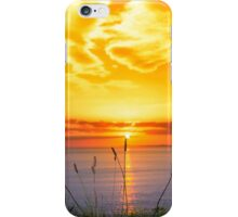 wild tall grass on the wild atlantic way orange sunset iPhone Case/Skin