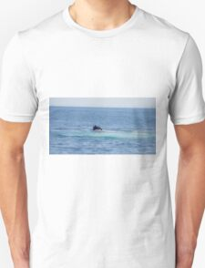 A Boston View 103A Unisex T-Shirt