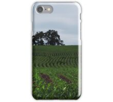 Knee High by the Fourth of July iPhone Case/Skin