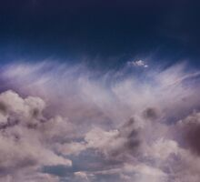 REACH FOR THE SKY  by Matthew Laming