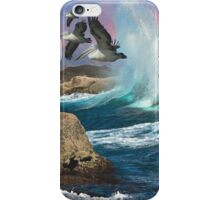 Pelican Bay iPhone Case/Skin