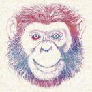 Chimpanzee Monkey Psychedelic by Zehda