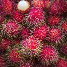 Rambutan by alan shapiro