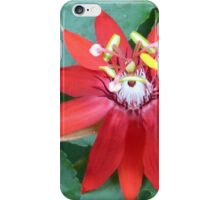 colors of the tropical zone - colores de la zona tropical iPhone Case/Skin