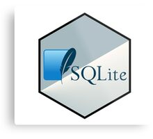 SQL lite hexagonal programming language  Metal Print