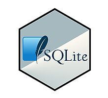 SQL lite hexagonal programming language  Photographic Print