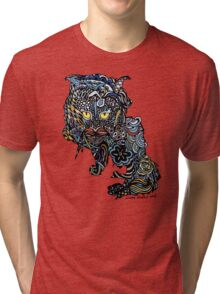 Dragon Cat Color on Faded Mint Blue Pattern Tri-blend T-Shirt