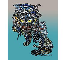Dragon Cat Color on Faded Mint Blue Pattern Photographic Print