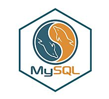 MYSQL hexagonal programming language sticker Photographic Print