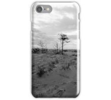 """""""The sunlight can change a heart in the wake of a bitter end."""" iPhone Case/Skin"""