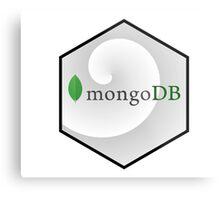 mongo DB hexagonal programming language Metal Print