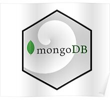 mongo DB hexagonal programming language Poster