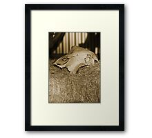 The Memory Remains Framed Print