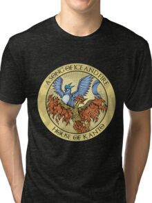 Song of Ice and Fire Tri-blend T-Shirt