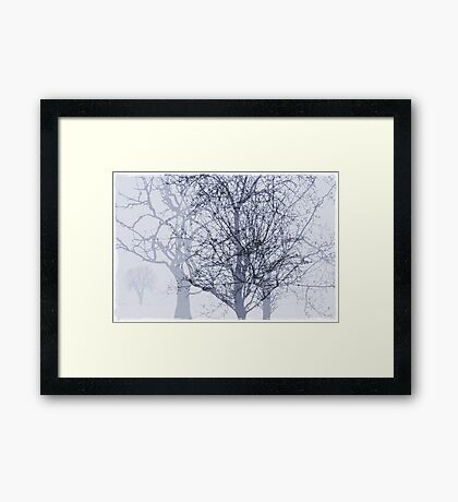 Winter in The Garden of Eden Framed Print
