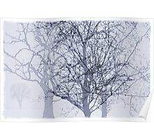 Winter in The Garden of Eden Poster