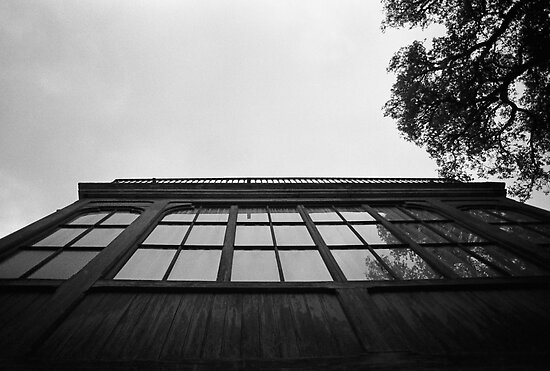 Skyward Reflection by James2001