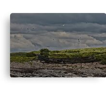 Abandoned Row Boat on Island  Canvas Print