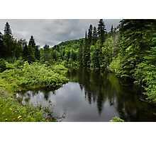 Forest Lake - Charlevoix, Quebec, Canada Photographic Print