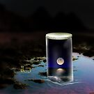 Moon in a jar by thebigG2005