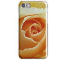 Peach Garden Rose iPhone Case/Skin