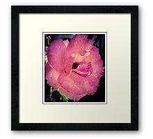 Flower 2 Framed Print