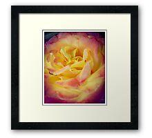 Flower 3 Framed Print