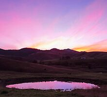 The Pink Pond - Gloucester NSW Australia by Beth  Wode