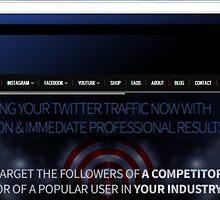 Buy High Quality Twitter Followers by lisidonal55