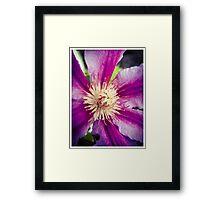 Flower 9 Framed Print