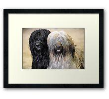 Coco & Loki Framed Print
