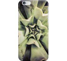 Succulents 3 iPhone Case/Skin