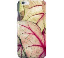 Pink Foliage iPhone Case/Skin