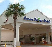 Ocean Palm Hotel St. Petersburg florida by jjonsan