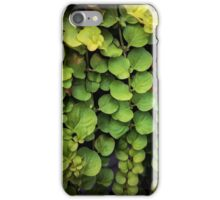 Waterfall of leaves iPhone Case/Skin