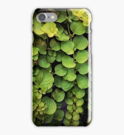 Waterfall of leaves iPhone Case/Skin
