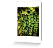 Waterfall of leaves Greeting Card