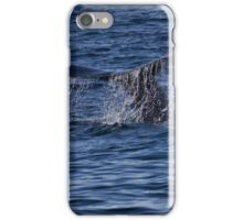 A Boston View 110 iPhone Case/Skin
