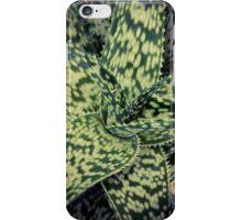 Succulents 12 iPhone Case/Skin