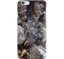 Rock, Tasmania iPhone Case/Skin
