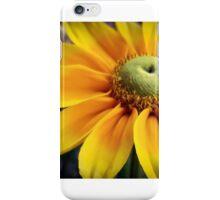 Moonbeam iPhone Case/Skin
