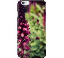 Flower 16 iPhone Case/Skin