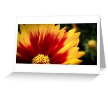 Flower 17 Greeting Card