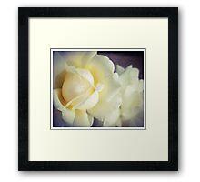 White Fluff Framed Print