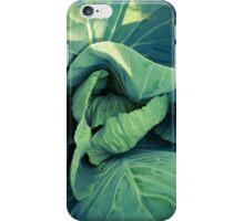 Lettuce iPhone Case/Skin